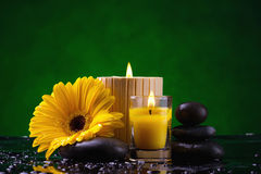 Spa still life with   flower  and water drop Stock Image