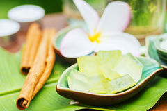 Spa still life with frangipani, fresh aloe and green leaf Stock Photo
