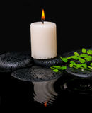 spa still life of green leaf fern with drop and candle Stock Photo