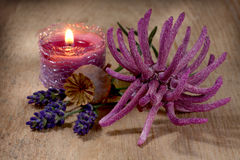 Spa still life with lavender and anemone Royalty Free Stock Photos