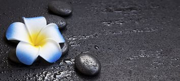 Spa still life with massage stones and frangipani flower Stock Photo