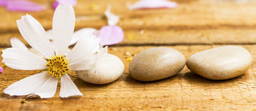 Spa still life with massage stones and white flower Stock Photo