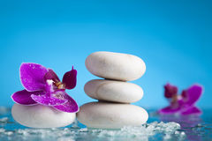 Spa still life with pink orchid and white zen stone Royalty Free Stock Images