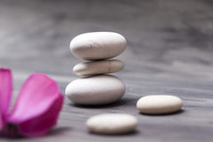Spa still life with pink orchid and white zen stone Royalty Free Stock Photo