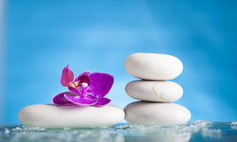 Spa still life with pink orchid and white zen stone in a serenit Royalty Free Stock Image