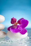 Spa still life with pink orchid and white zen stone Royalty Free Stock Photography