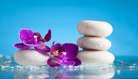 Spa still life with pink orchid and white zen stone Stock Photo