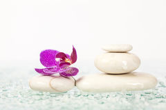 Spa still life with pink orchid and white zen stone Stock Photography