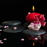 Spa still life of red candle, zen stones with drops, orchid Royalty Free Stock Images