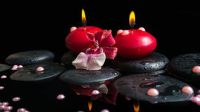 Spa still life of red candles, zen stones with drops, orchid Stock Images