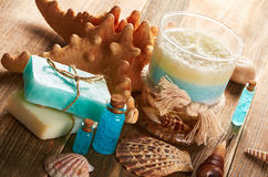 Spa still life with seashells Royalty Free Stock Photography