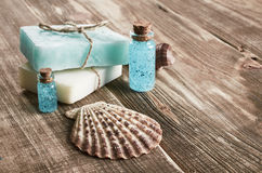 Spa still life with seashells Royalty Free Stock Photo