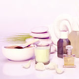 Spa still life with stacked of stone and palm leaf. Stock Photos