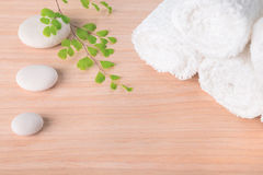 Spa still life with stone, green  branch  and white towel Royalty Free Stock Image