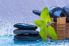 Spa still life with stone  and leaves for banner Royalty Free Stock Photography