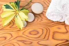 Spa still life with stone, variegated leaf  and white towel Stock Image