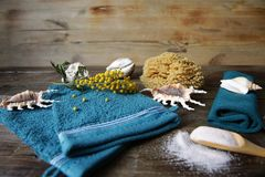 Spa still life terry massage and spa mittens in a wooden spoon, towel, shells and flowers for decoration with copy space fo royalty free stock photos
