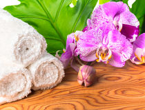 Spa still life with unusual lilac orchid flowers, phalaenopsis stock photo