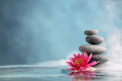 Spa. Still life with water lily and zen stone in a serenity pool Royalty Free Stock Images