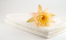 Spa still life on white background Royalty Free Stock Photography