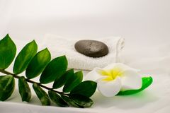 Spa still life on white background, relaxation and spa concept. Green leaves and black wet stones. stock photography
