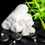 Spa still life of white hibiscus flower, bamboo, towels and bead Royalty Free Stock Photo