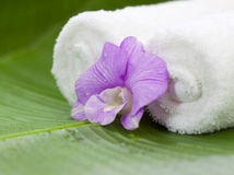 Spa Still Life With Orchid Stock Image