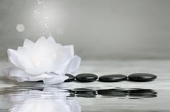 Free Spa Still Life With Water Lily And Massage Stones Stock Photo - 160193770