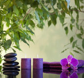 Spa still life with zen stones and orchid Royalty Free Stock Photos