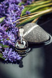 Spa stilleben med nödvändig olja i glasflaskan, vår blommar och stenar på mörk bakgrund closeup Arkivbild