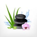 Spa stone with aloe. Spa concept with aloe. Vector icon. EPS10 vector Stock Image