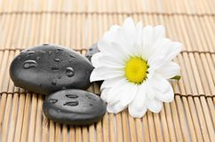 The spa a stone on bamboo background Stock Photos
