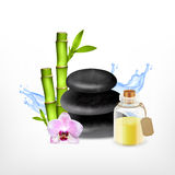 Spa stone with bamboo. Spa concept. Spa stone with bamboo, orchid and essential oil jar. Vector icon. EPS10 Royalty Free Stock Photography