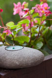 Spa. Stone candle and flowers aromatherapy Royalty Free Stock Photo