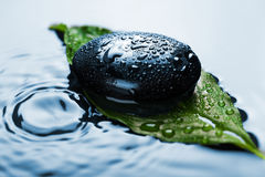 Spa stone on leaf in water Stock Photography