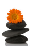 Spa stone and orange flower Royalty Free Stock Photos