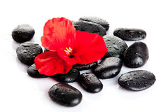 Spa Stone.  Zen pebbles. Stock Image