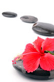 Spa stones. With hibiscus on white background Royalty Free Stock Image