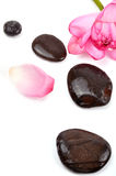 Spa stones. With lotus on white background Royalty Free Stock Photography