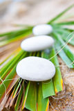 Spa stones. Three white stones on the beach in summer day on green leaf Royalty Free Stock Photos