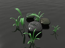 Spa stones vector illustration