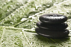 Spa stones. On a green background Stock Photography
