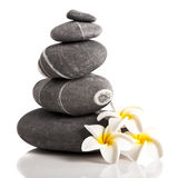Spa Stones. Stones pyramid with a plumeria flower, isolated on white background Royalty Free Stock Image