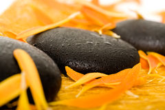 Spa stones. Row of black spa stones in an environment of orange petals Royalty Free Stock Images