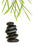Spa Stones and Bamboo Grass Stock Images