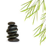 Spa Stones and Bamboo Leaf Grass Stock Photography