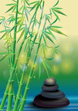 Spa stones and bamboo Stock Image