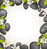 Spa stones with cherry white flowers like frame on beige Royalty Free Stock Images