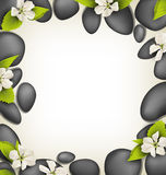 Spa stones with cherry white flowers like frame on beige Stock Photo