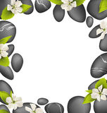 Spa stones with cherry white flowers like frame  on whit Royalty Free Stock Images